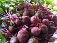 Bob's farm beets.jpg