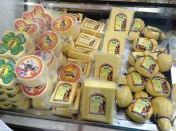 cow cheeses.JPG