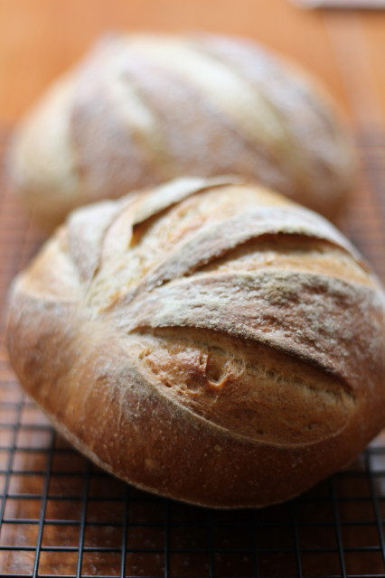 Five min bread
